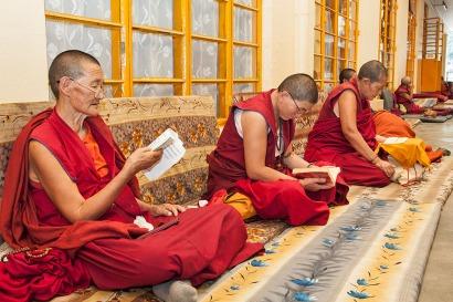 Nuns engrossed in prayers